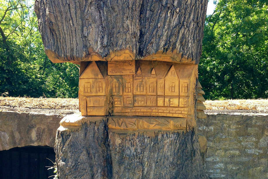 Wooden tree with middle section carved out