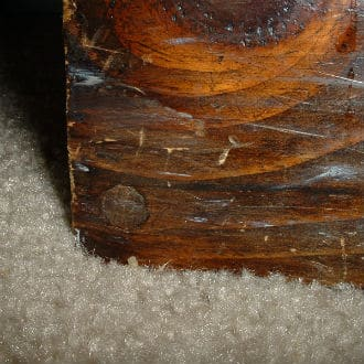 The bottom left of center shows a wood plug covering a wood screw tightened below the surface of the wood. A specialized pilot hole bit with countersinking was used.