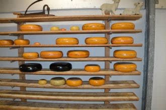 This picture shows shelves supported by metal pipes. The shelves are holding cheese. Small image.