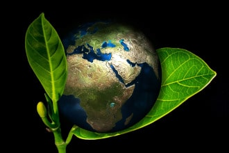 This picture shows a globe on a green leaf. It symbolizes an eco-friendly Earth.